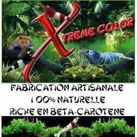 Xtrème Color palets
