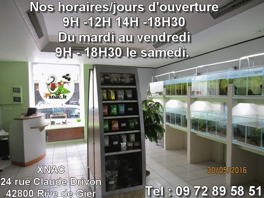 Magasin horaire