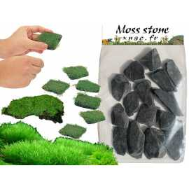 Moss Stone - Lot 15 pièces