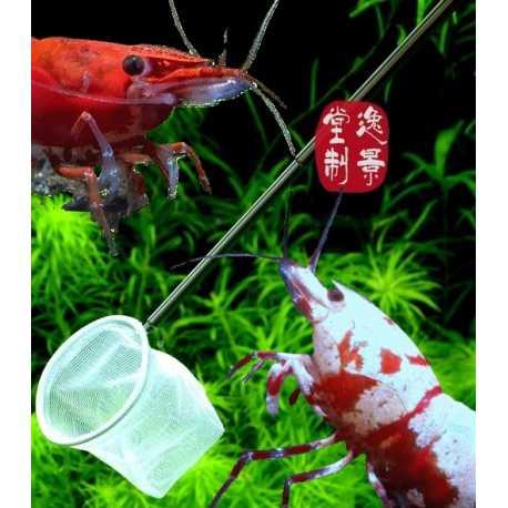 Épuisette sélection crevettes 3D